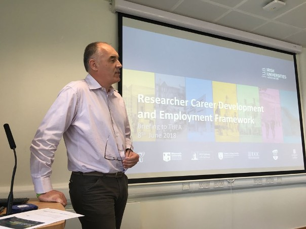 THEA hosts National Researcher Careers Framework Mutual Learning Experience